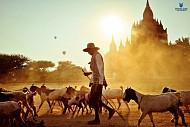 VẺ ĐẸP MYANMAR - NHỮNG GÌ TÔI THẤY VÀ CẢM NHẬN