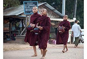 Những chia sẻ về tu viện ở Salay - Myanmar Phần 2