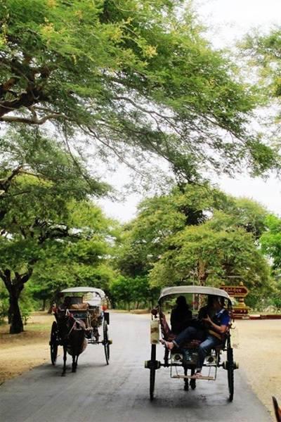 Du Lịch Myanmar - Từ Yangon nhộn nhịp đến Bagan yên bình