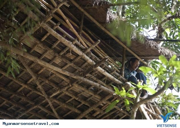 Kyat Chuang - ngôi làng trên cây ở Myanmar,kyat chuang  ngoi lang tren cay o myanmar